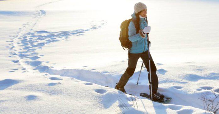 Finding Opportunities in Winter